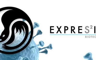 ExpreS2ion appoints Honeybadger as the company's IR partner